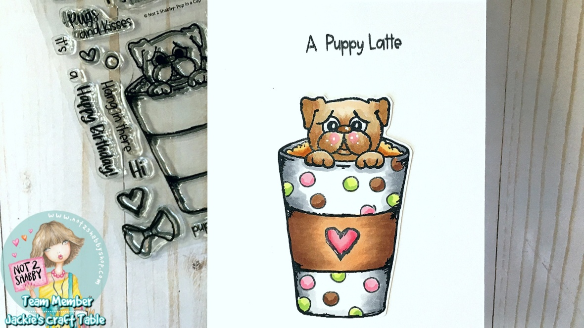 Pup In Cup 4